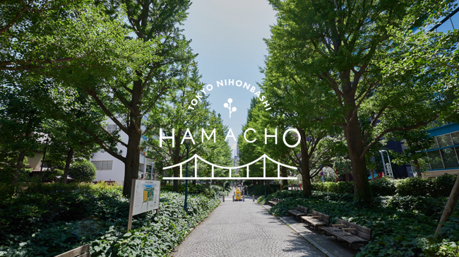 WHAT IS HAMACHO
